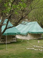 camping packages manali